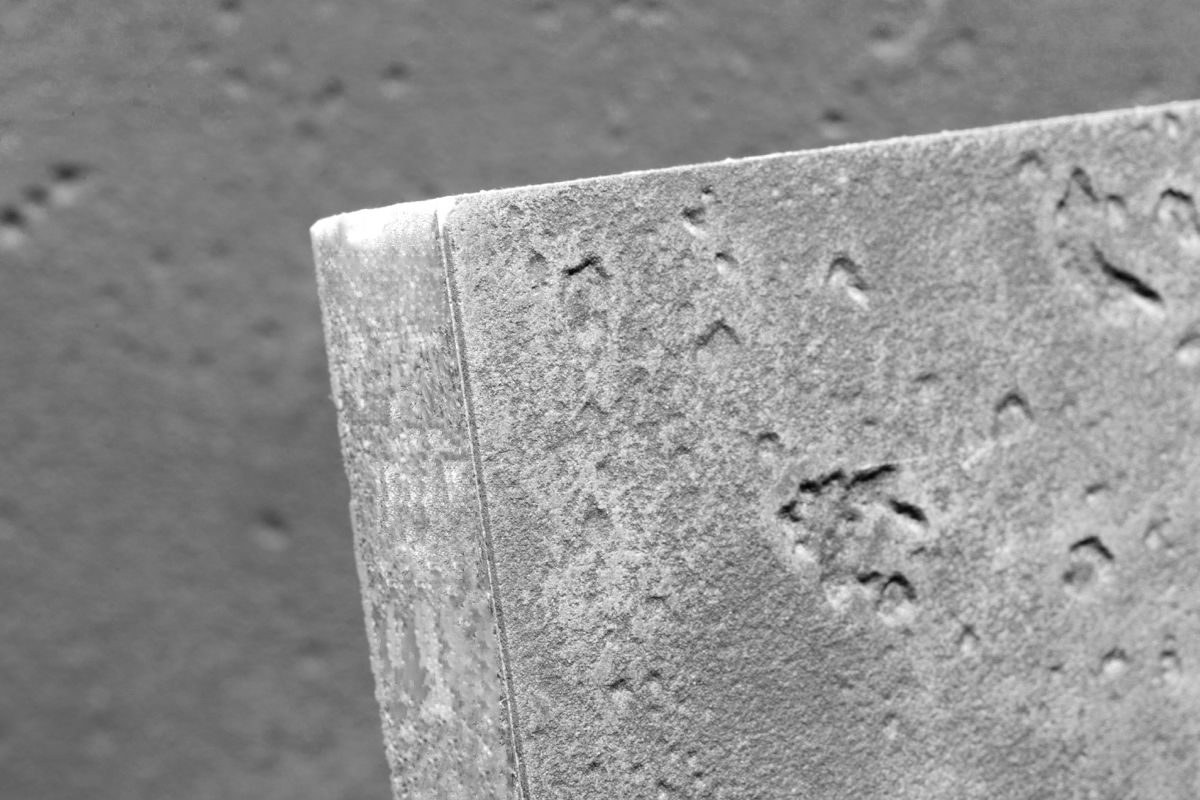 Detail Betonbeschichtung auf Messestellwand by matogo